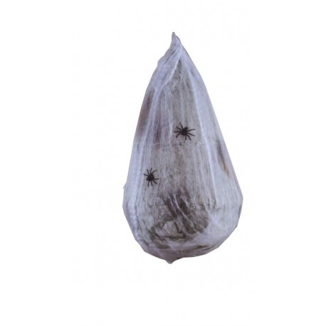 Cocoon Egg
