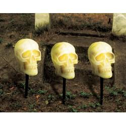Skull Pathway Lights and Sound