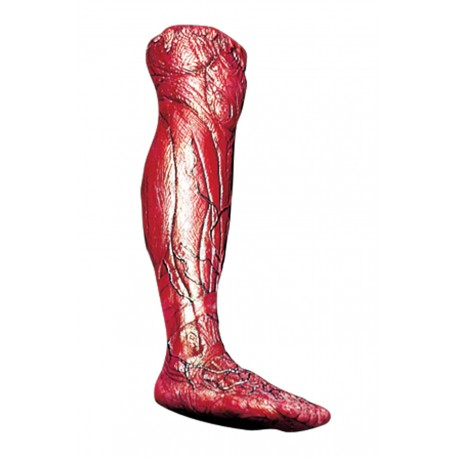 Skinned Right Leg Prop