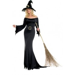 Cauldron Witch Costume - Adult