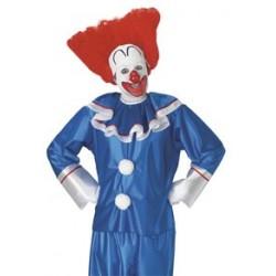 Bozo Adult Clown Wig