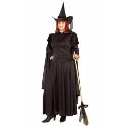 classic-witch-costume-adult-plus