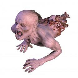 Creeping Zombie