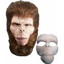 Chimp Prosthetic