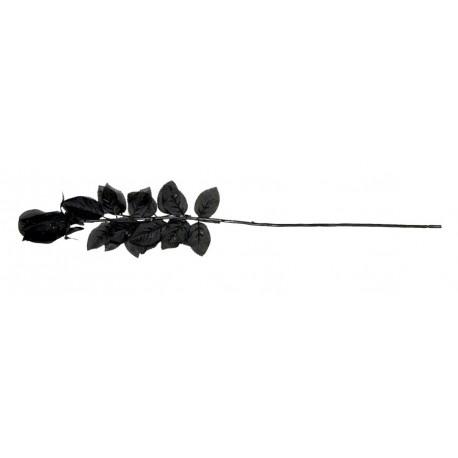 Black Roses Bouquet