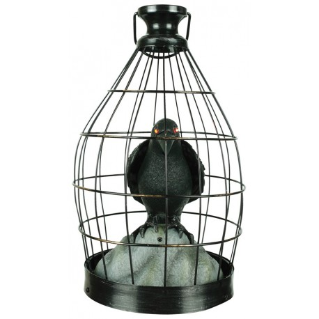 Crow In Cage - Animated