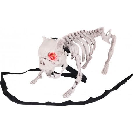 Barking Dog Skeleton Animated Prop